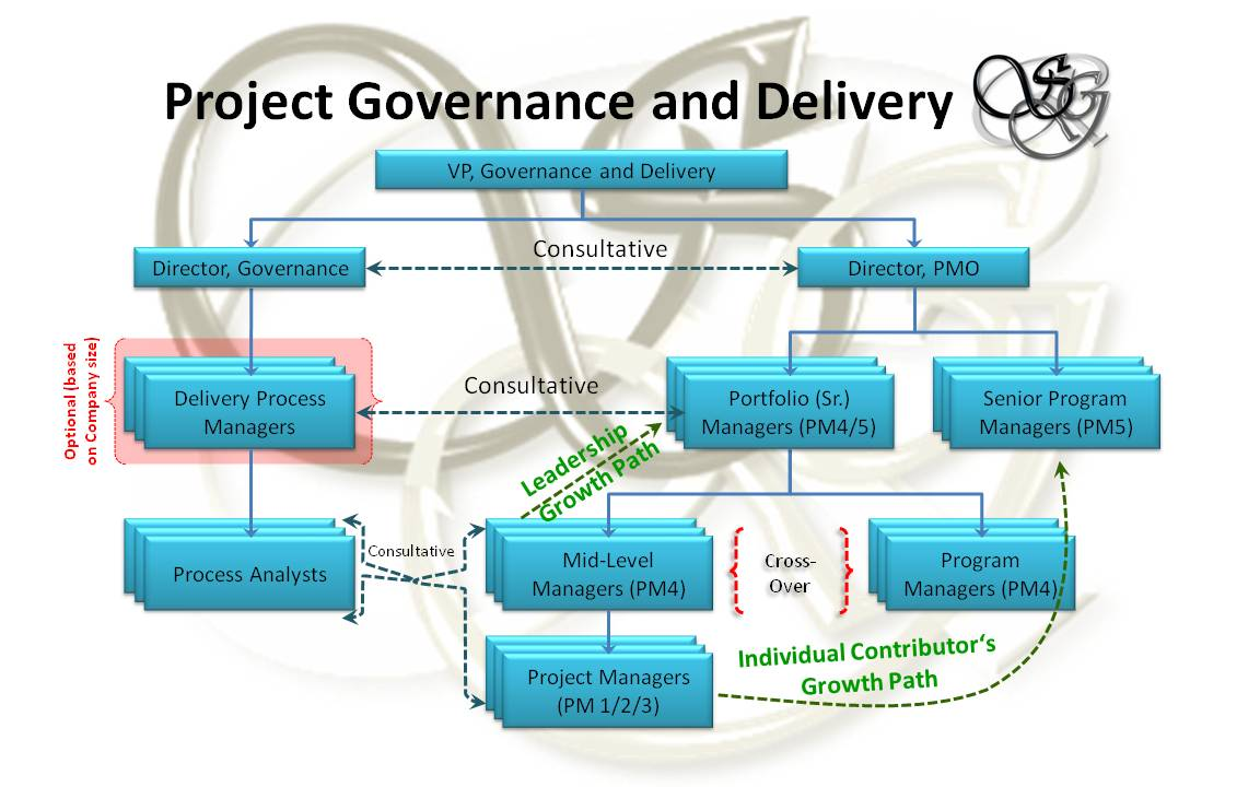 Project Management and Governance Orginaztion Structure