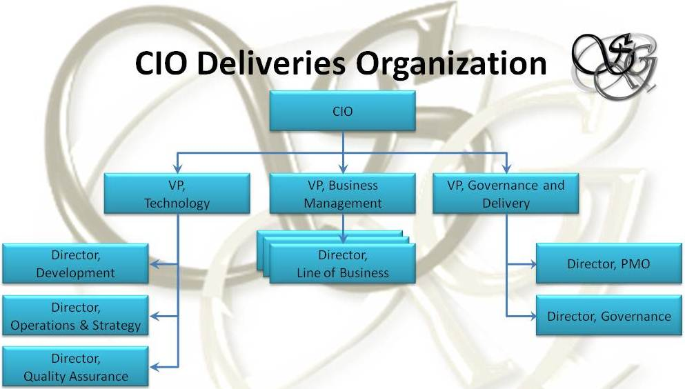 CIO's Delivery Orginaztion Structure